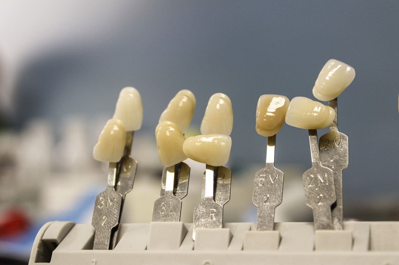 Models of Teeth